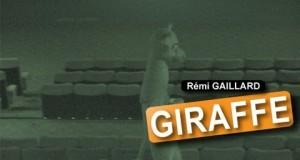 Remi Gaillard al cinema